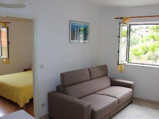 Pape yellow peace - Hvar vacation rentals