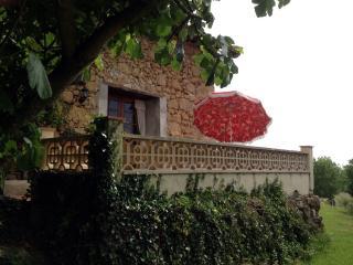 Le Figuier en Haute-Garonne lim Gers en Gascogne - Saint-Frajou vacation rentals