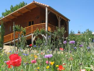 Cozy 2 bedroom Chalet in Billom with Internet Access - Billom vacation rentals