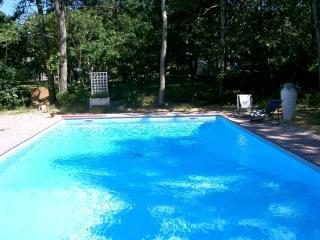 East Hampton sundrenched oasis - East Hampton vacation rentals