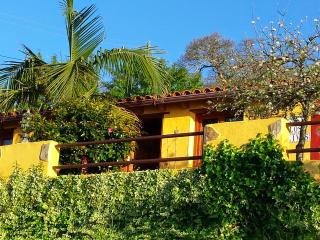 Romantic 1 bedroom Finca in La Orotava - La Orotava vacation rentals