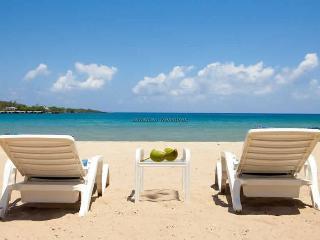 Beachnut, Rio Bueno, Jamaica Villas 2BR - Rio Bueno vacation rentals