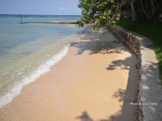 Idleawile Villa, Rio Bueno-Discovery Bay 6BR - Rio Bueno vacation rentals