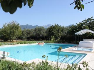 Casa vacanza - Forte Dei Marmi vacation rentals