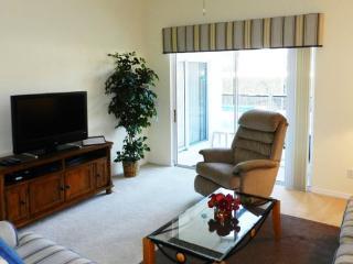 4 Bedroom Pool Home Near Disney. Sleeps 10. 463TC - Four Corners vacation rentals