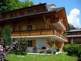Apartment in amazing Chalet, ski and summer, sprin - Villars-sur-Ollon vacation rentals