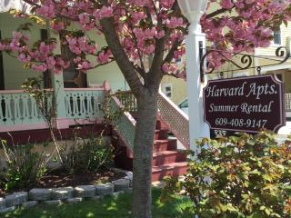 Harvard Apt #2 -Great Loc! 2 blocks to beach, mall - Cape May vacation rentals