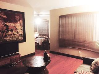 WSOP/ EDC Beautiful condo - Las Vegas vacation rentals