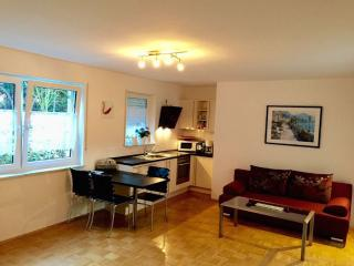 Vacation Apartment in Konstanz - 646 sqft, bright, luxurious (# 7365) - Konstanz vacation rentals