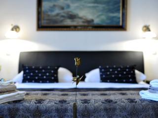 Superior President suite apartment - Zagreb vacation rentals