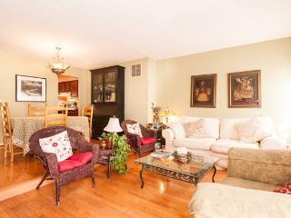 Cozy townhouse in Fairfax/Reston/Chantilly - Fairfax vacation rentals