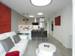 Magnificent apartment San Sebastian - San Sebastian - Donostia vacation rentals