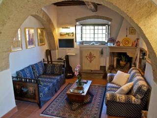 In Chianti, Close to Florence & Siena. - Tavarnelle Val di Pesa vacation rentals
