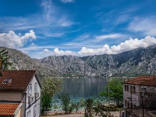 Apartment Stoliv - Kotor vacation rentals