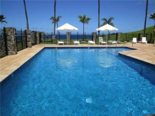 Perfect 1 bedroom Kapalua House with Private Outdoor Pool - Kapalua vacation rentals