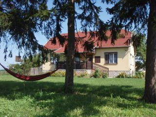Nice Villa with Internet Access and Central Heating - Tiszafured vacation rentals