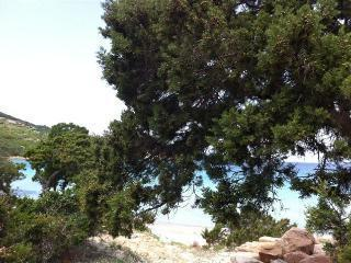 Solemare case vacanze villetta n°5 - San Teodoro vacation rentals