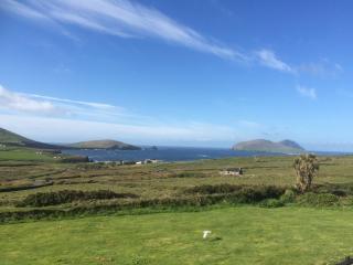 Blasket Island View - Dunquin vacation rentals