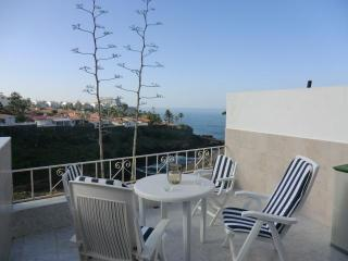 Sol y Mar - Los Gigantes vacation rentals