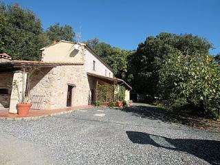 Cozy House in Monteverdi Marittimo with Deck, sleeps 5 - Monteverdi Marittimo vacation rentals