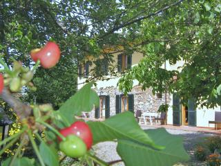 3room apartment  Tuscany the sea, cities of art - Pomaia vacation rentals