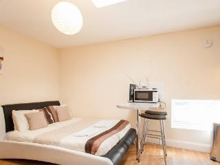*SUMMER DISCOUNT* Studio, South London - London vacation rentals