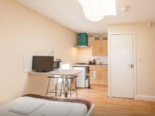 *MAY DISCOUNT* Studio Apartment, South London - London vacation rentals