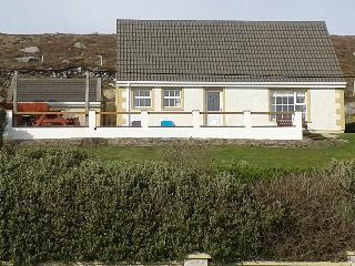 wild Atlantic view - Gaoth Dobhair (Gweedore) vacation rentals