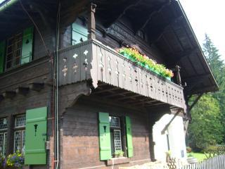 Bright 3 bedroom Condo in Marianske Lazne with Internet Access - Marianske Lazne vacation rentals