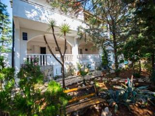 Island of Pag - Mandre - Holiday Apartments Viola - Mandre vacation rentals