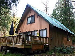 #22 Pet Friendly Cedar Cabin with WiFi + Netflix! - Glacier vacation rentals