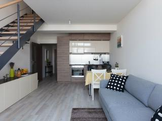 Cozy Condo with Internet Access and Wireless Internet - Prague vacation rentals