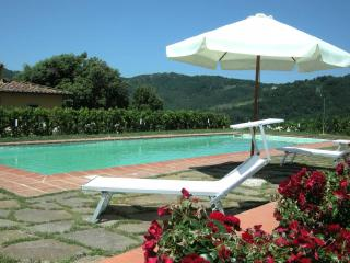 Bright 5 bedroom House in Massa e Cozzile - Massa e Cozzile vacation rentals
