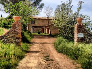 TUSCANY FOREVER PRIVATE VILLA BERTI Montescudaio - Montescudaio vacation rentals