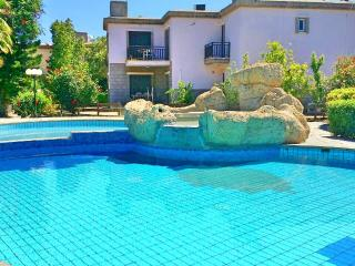 Seafront villa with pool in tourist area Larnaca - Oroklini vacation rentals