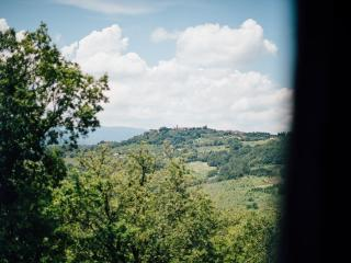 Peaceful Tuscany for 2 with shared swimming pool - Radicondoli vacation rentals