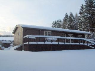 Nice Chalet with Balcony and DVD Player - Achouffe vacation rentals