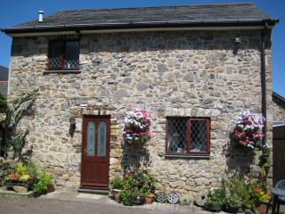 The Shippon, Coombe Head Farm, North Dartmoor - Sticklepath vacation rentals