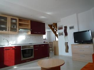 9 bedroom Apartment with Internet Access in Izola - Izola vacation rentals