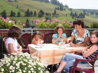 Pension Glöcklehof - Ferienwohnung Feldberg - Todtnauberg vacation rentals