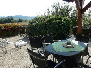 Vacation Apartment in Breisach am Rhein - 624 sqft, maximum 4 people (# 8482) - Achkarren vacation rentals