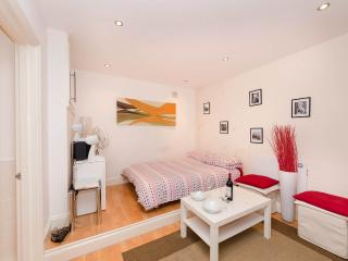 Stylish Studio Central London - London vacation rentals