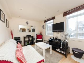 Airy1Bedroomed Marylebone Flat - London vacation rentals