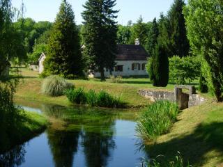 Gîte écologique au bord de l'eau - Druyes-les-Belles-Fontaines vacation rentals