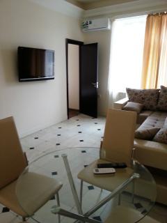 1 bedroom Apartment with Internet Access in Yerevan - Yerevan vacation rentals