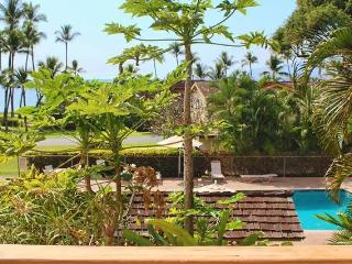 Charming House with Internet Access and A/C - Lahaina vacation rentals