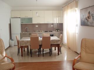 Bright 2 bedroom Okrug Gornji Apartment with Internet Access - Okrug Gornji vacation rentals