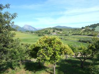 Nice Gite with Internet Access and Toaster - Prado del Rey vacation rentals