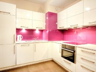 Perfect 2 bedroom Apartment in Krakow with Internet Access - Krakow vacation rentals