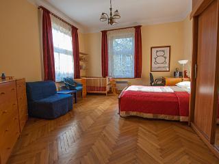 Good Night 2 Apartment - Krakow vacation rentals